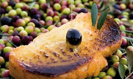 Semana del olivo y el Aceite de Oliva de Navarra